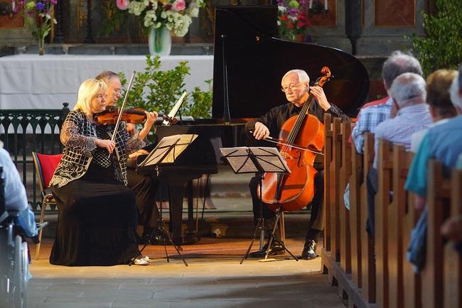 2014 | České trio, Dana Vlachová, Miroslav Petráš, Milan Langer